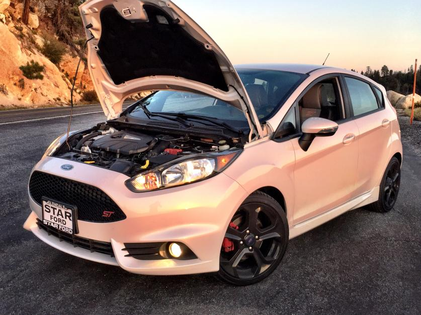 Fiesta St Forum >> Welcome To The Fiesta St Forum Please Post An Introduction Thread